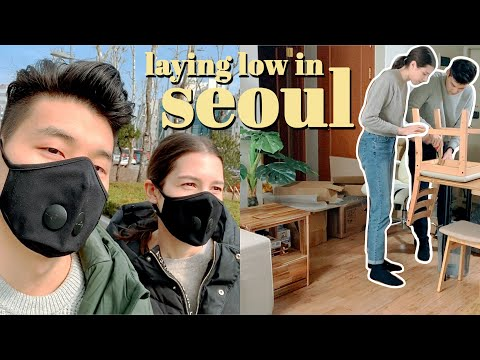 Korea's Situation & Laying Low in SEOUL   Chat & Apartment Decorating