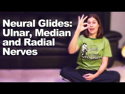 Neural Glides for Ulnar, Median & Radial Nerves - Ask Doctor Jo