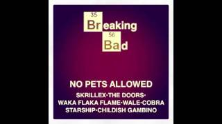 """Breaking Bad"" - Skrillex x Waka Flaka Flame x Cobra Starship & More"
