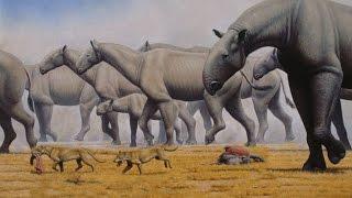 Gelmiş Geçmiş En Büyük 10 Hayvan Türü