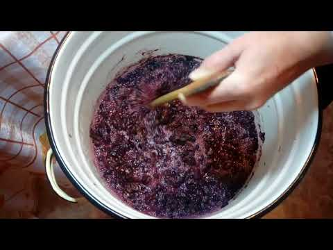 Как сделать правильно вино из винограда