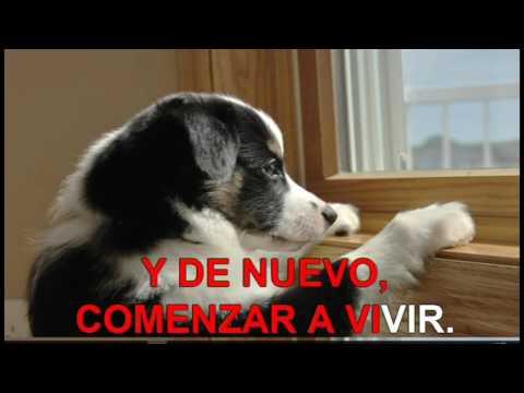 karaoke  La Revolución de Emiliano Zapata  Cómo Te Extraño