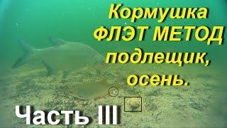 Флэт метод.Кормушка. Подлещик,осень.Подводное видео.Часть III.