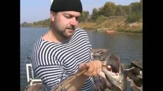 видео Рыбак вытащил из Днепра тысячелетний меч