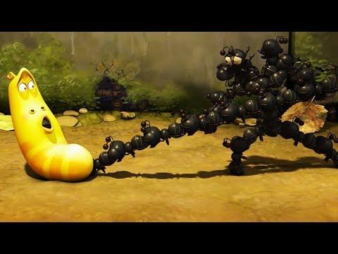 LARVA - ANT ATTACK | Cartoon Movie | Cartoons For Children | Larva Cartoon | LARVA Official