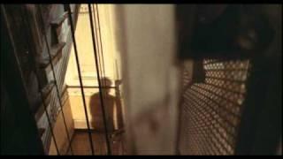 La Tarantola dal Ventre Nero (Trailer Inglese)