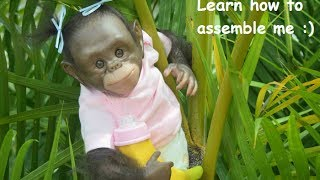 How to assemble a  Chimpanzee Reborn Monkey Baby - Miracle Babies Newborn Nursery