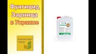 Фунгицид Зарница 🌱, описание препарата 🌱