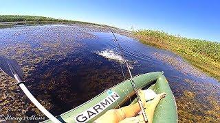 Рыбалка на щуку и окуня. Та самая разведка по щучьим местам. Вело-водный поход.
