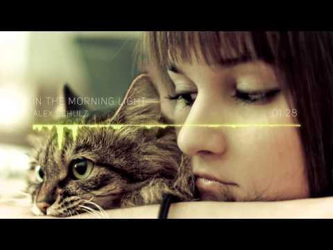 Alex Schulz - In the Morning Light (Radio Mix)