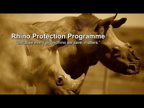The Rhino Protection Programme