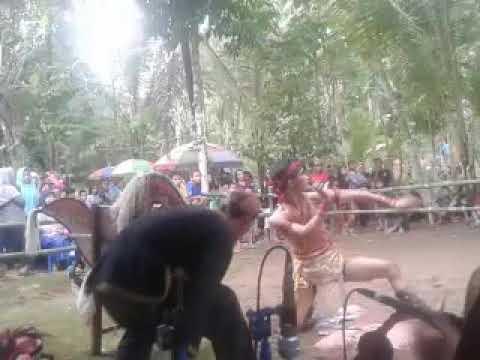 Jaran Kepang Bayu Turonggo Cangkrep lor (Kiprah Wayang) mendem
