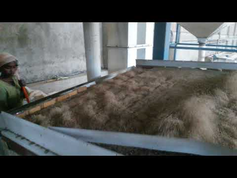 Seed Grain Bean Cleaning Plant in Africa
