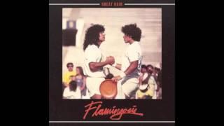 Flamingosis - Great Hair (Full Album)