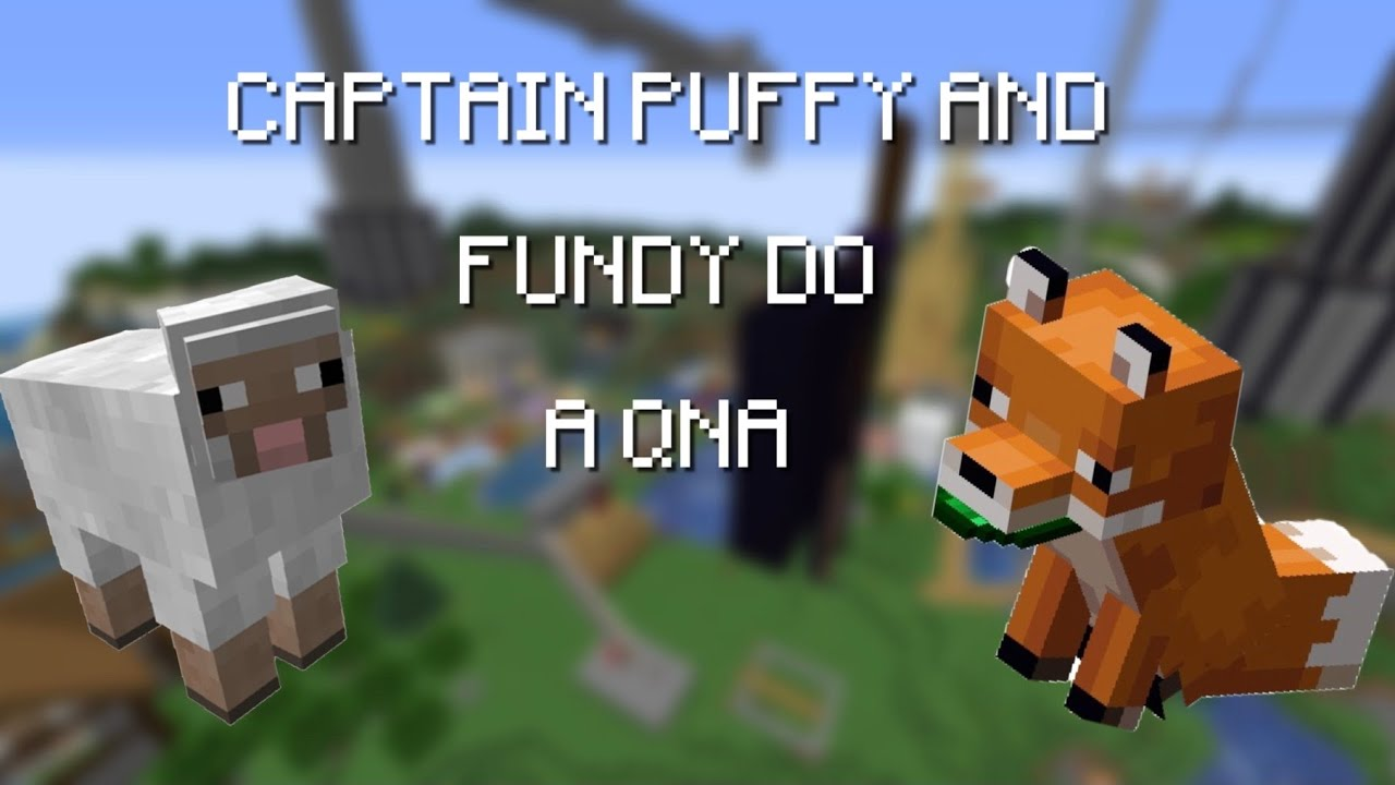 captain puffy and fundy do a QnA   fundy's stream