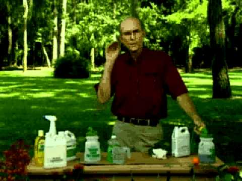 Jerry Baker S Year Round Lawn Care Summer Weed Control