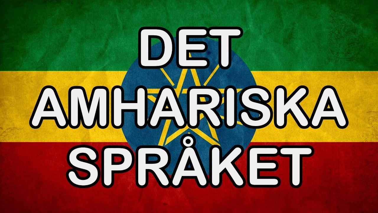 Amhariska Spraket Oversattning Till Amhariska