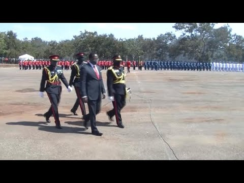 Malawi declares state of emergency over Covid-19