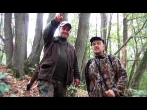 телеканал охота и рыбалка универсальная собака