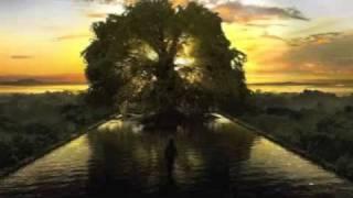 Cocorosie - Werewolf (dubstep remix)