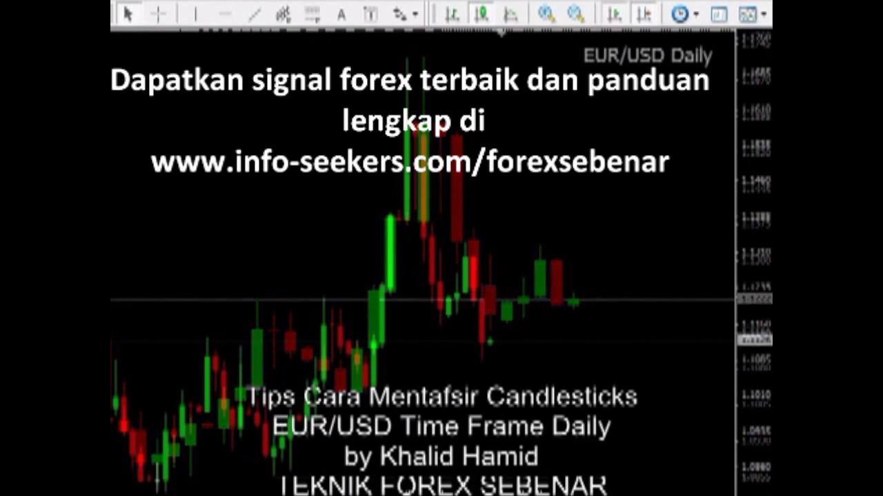 signal forex terakurat