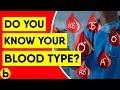 8 Essential Facts About Your Blood Type You Should Know の動画、YouTube動画。