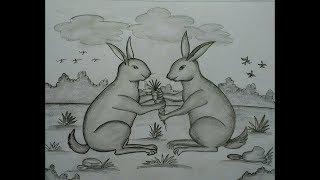 pencil easy rabbits drawing