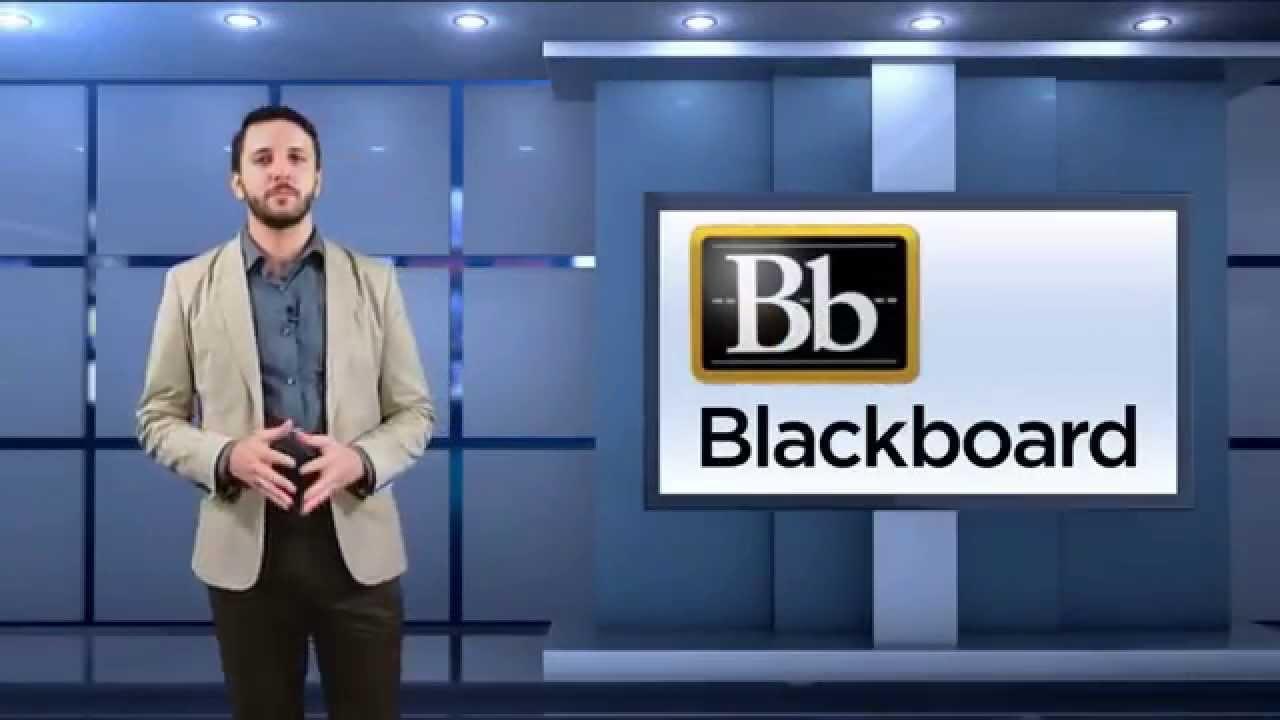 brandman university blackboard
