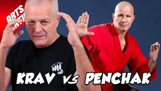 Download lagu KRAV MAGA vs PENCHAK SILAT Alain Formaggio vs Franck Ropers MP3
