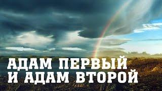 BS205 Rus 13. Сравнение первого и второго Адама. Духовные уроки