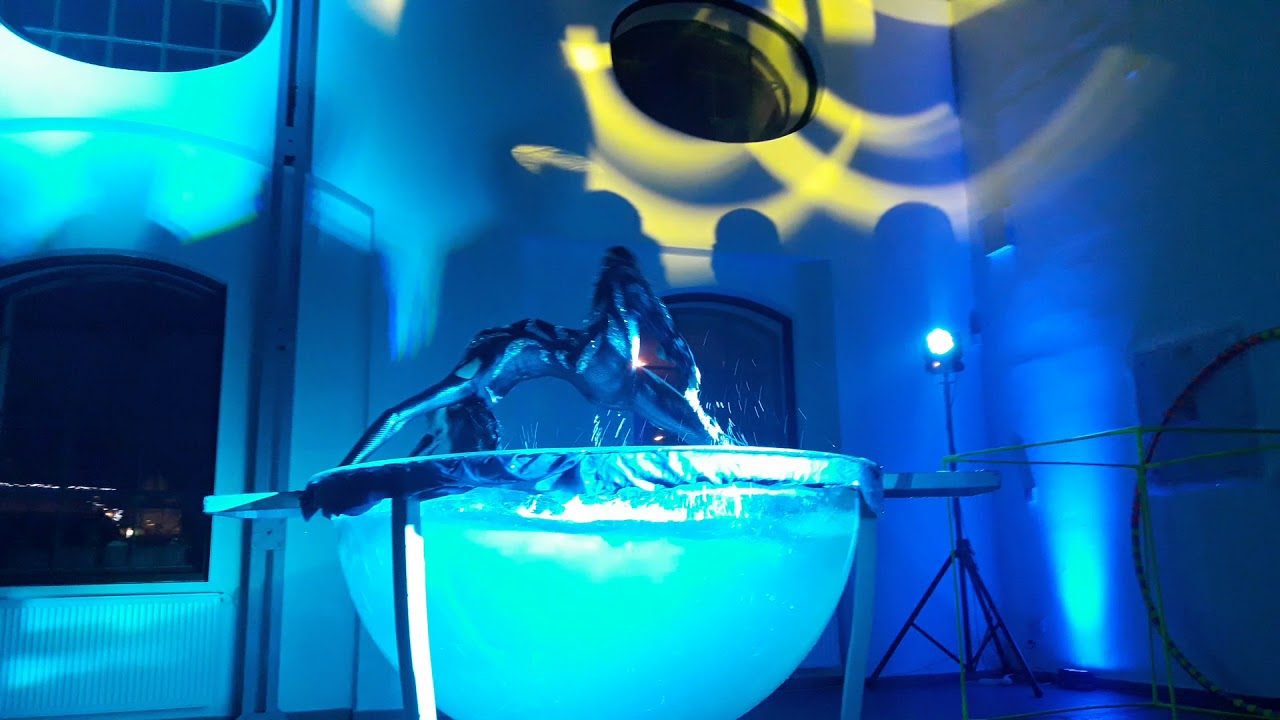Water bowl Performance at Aihua in Marbella - YouTube