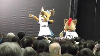 2019.1.19 幕張メッセにて行われた、ニッポンハムグループ商品展示会の北海道日本ハムファイターズのイベントステージの様子です.