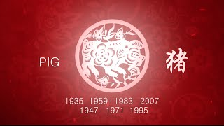 Year of the Pig: 2016 Chinese Horoscope