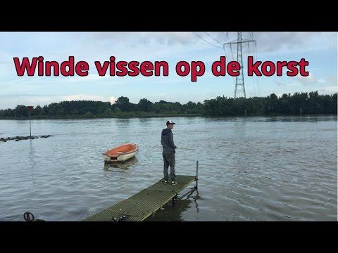 Karper # Kings - Winde vissen op de korst