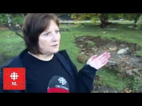 Hurricane Matthew - The Kendells survey the damage