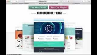 Installing Divi Theme for WordPress