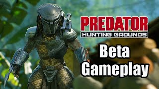 Predator: Hunting Grounds Trial (2020) - Beta Gameplay [PS4 Pro]