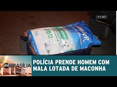 Polícia prende homem com mala lotada de maconha em Taguatinga | SBT Brasília 18/07/2018