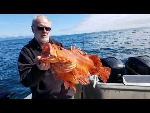 Alaska Kingfisher Lodge 32' X 11' Charter Boats, Craig Alaska, Prince Of Wales Island