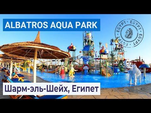 Полный обзор отеля Albatros Aqua Park Sharm 5* | Шарм-эль-Шейх, Египет