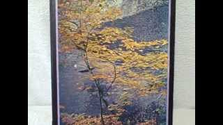 1971 Springbok Bookcase Jigsaw Puzzles Leaves Of Autumn And Patterns Vintage