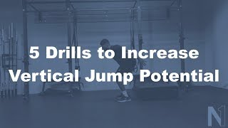 5 Drills to Increase Vertical Jump Potential