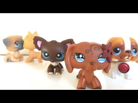 LPS: Camp Riverwood Episode 1: The Invitation (Inspired By LPS Popular)