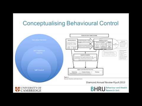 SCPHRP Public Lecture Series: 'Reducing Health Inequalities: A Behavioural Science Perspective'