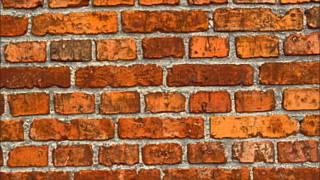 betena shitmez die tegen een muur aanloopt