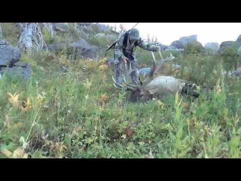 British Columbia Elk Hunting