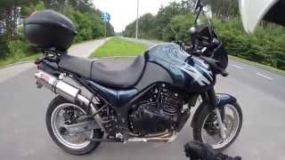 Triumph Tiger with Motad Venom