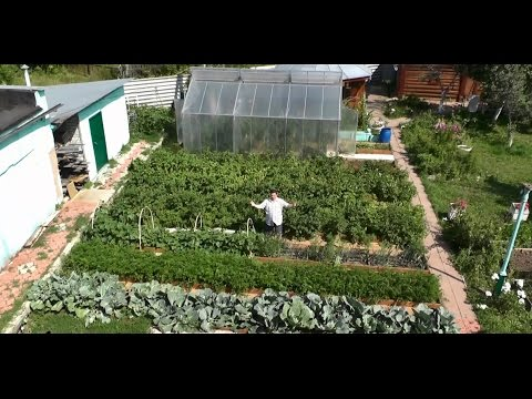 Сад и огород своими руками в сибири огород без хлопот