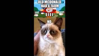 grumpy cat tribute (best grumpy cat memes)