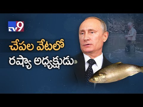 Shirtless Vladimir Putin Goes Fishing In Siberia - TV9
